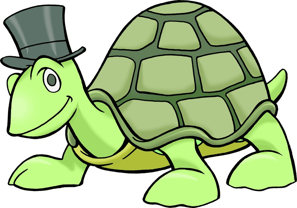 996x700 Turtle Images Clipart Collection