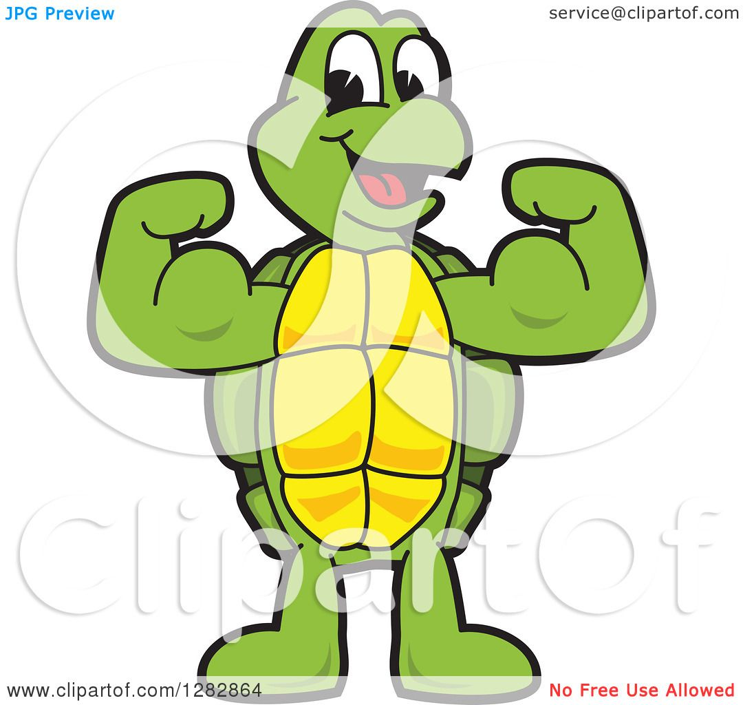 1080x1024 Clipart Of A Happy Turtle School Mascot Character