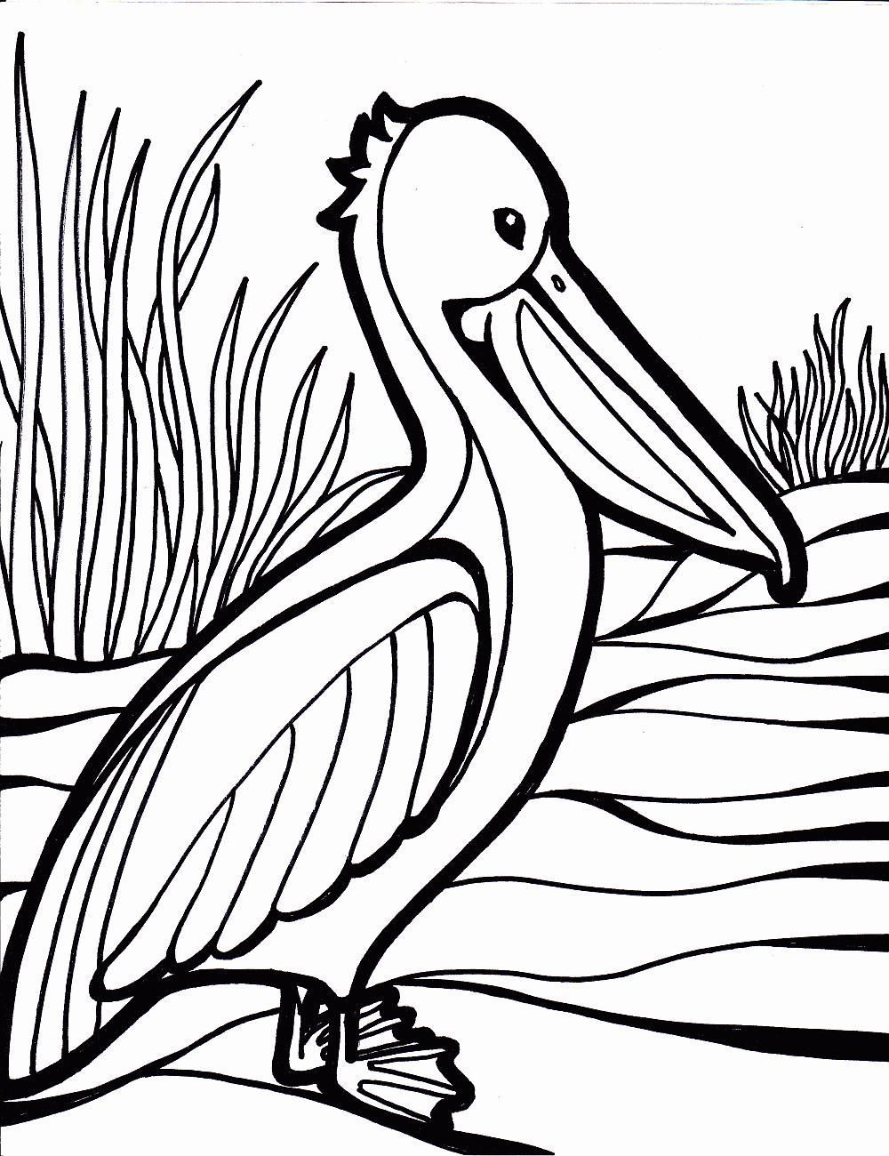 1000x1300 Great Tweety Bird Coloring Pages Printable Pictures Inspiration