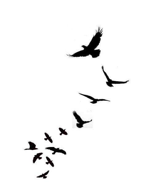 500x595 Two Love Birds Tattoos, Black