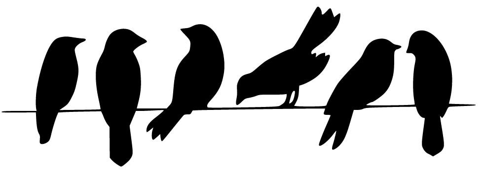 981x355 Birds On A Wire Silhouette