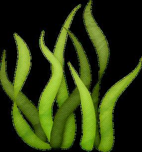 286x306 Tall Grass Silhouette Clip Art Sgblogosfera.