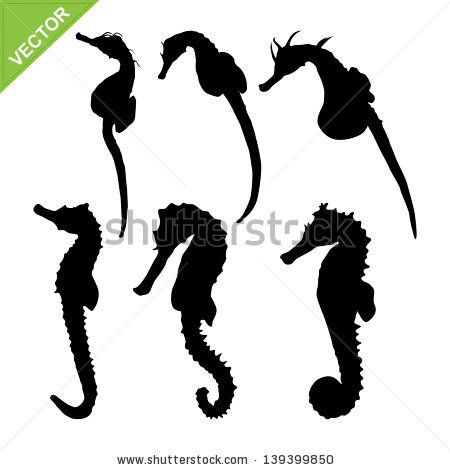 450x470 Flying Seahorse Projets Essayer Seahorses