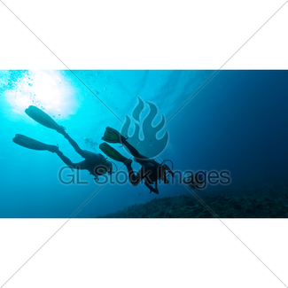 325x325 Group Of Scuba Divers Underwater Gl Stock Images