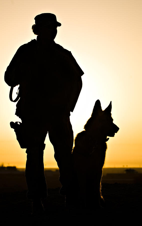 567x900 Military Working Dog Clipart