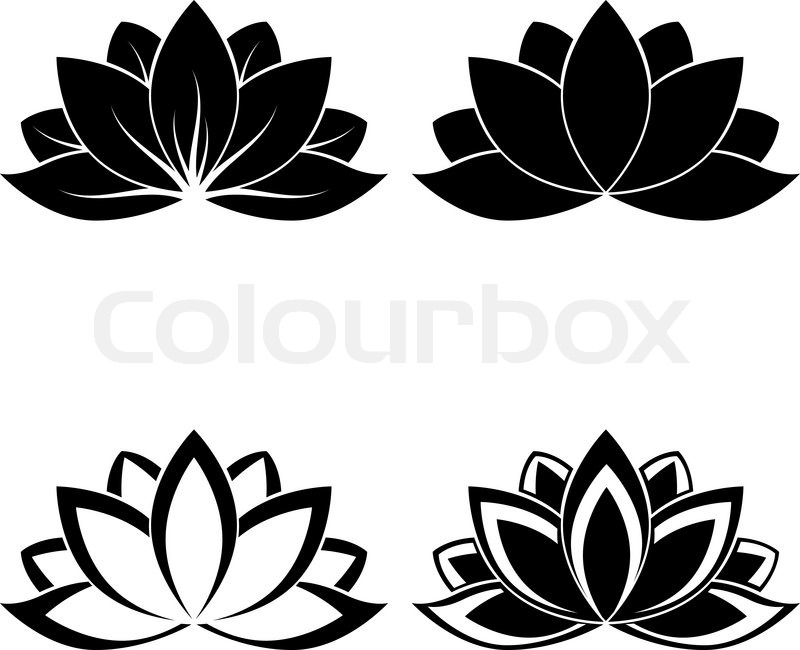 800x650 Lotus Flower Silhouette