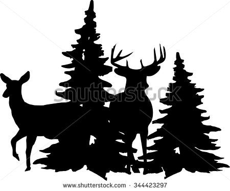 450x373 Whitetail Buck And Doe Standing Near Pine Trees. Stock Vector