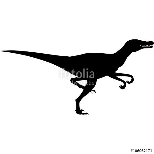 500x500 Raptor Silhouette Stock Image And Royalty Free Vector Files