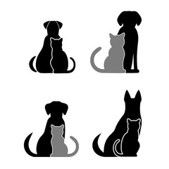 240x240 Search Photos Veterinary Symbol