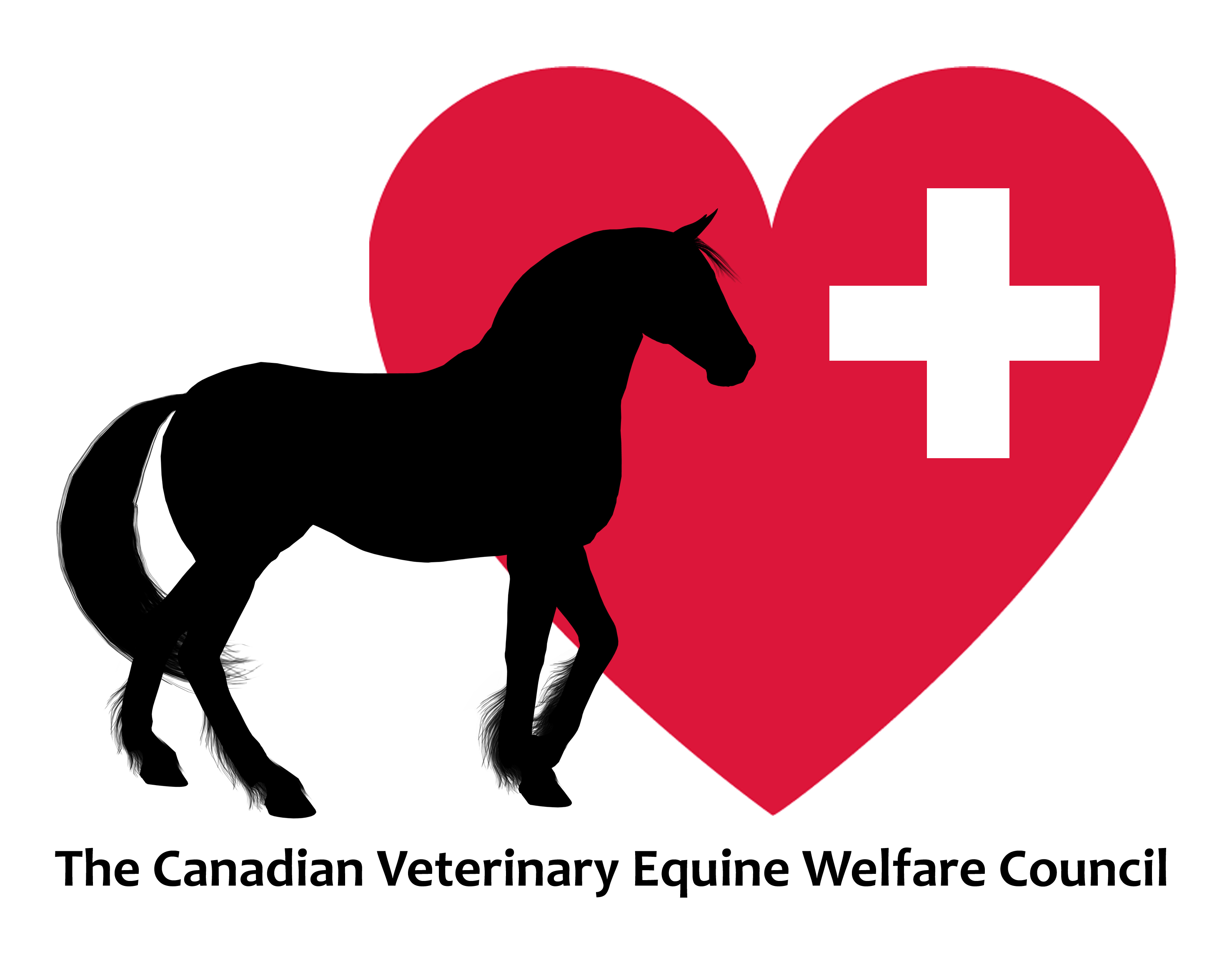 2956x2288 Announcing The Launch Of The Canadian Veterinary Equine Welfare