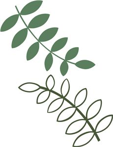 Vine Silhouette At Getdrawings Com Free For Personal Use Vine