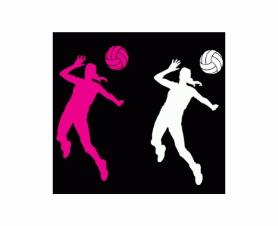 401x326 Volleyball Hitter Position Window Decal