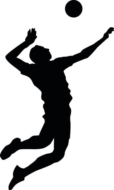 369x612 Volleyball Player Clipart Free Silhouette Image 3191