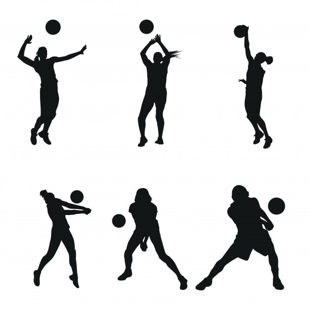 626x626 Volley Vector Vectors, Photos And Psd Files Free Download