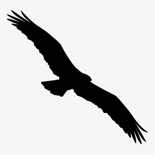 512x512 Eagle Silhouette, Bird, Flight, Animal Png Image And Clipart
