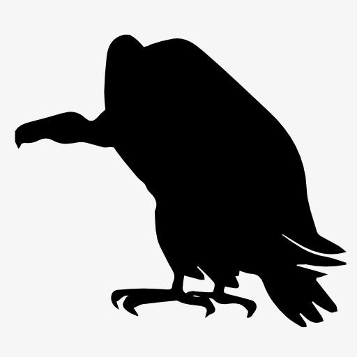 512x512 Vulture Silhouette, Bird, Flight, Animal Png Image And Clipart