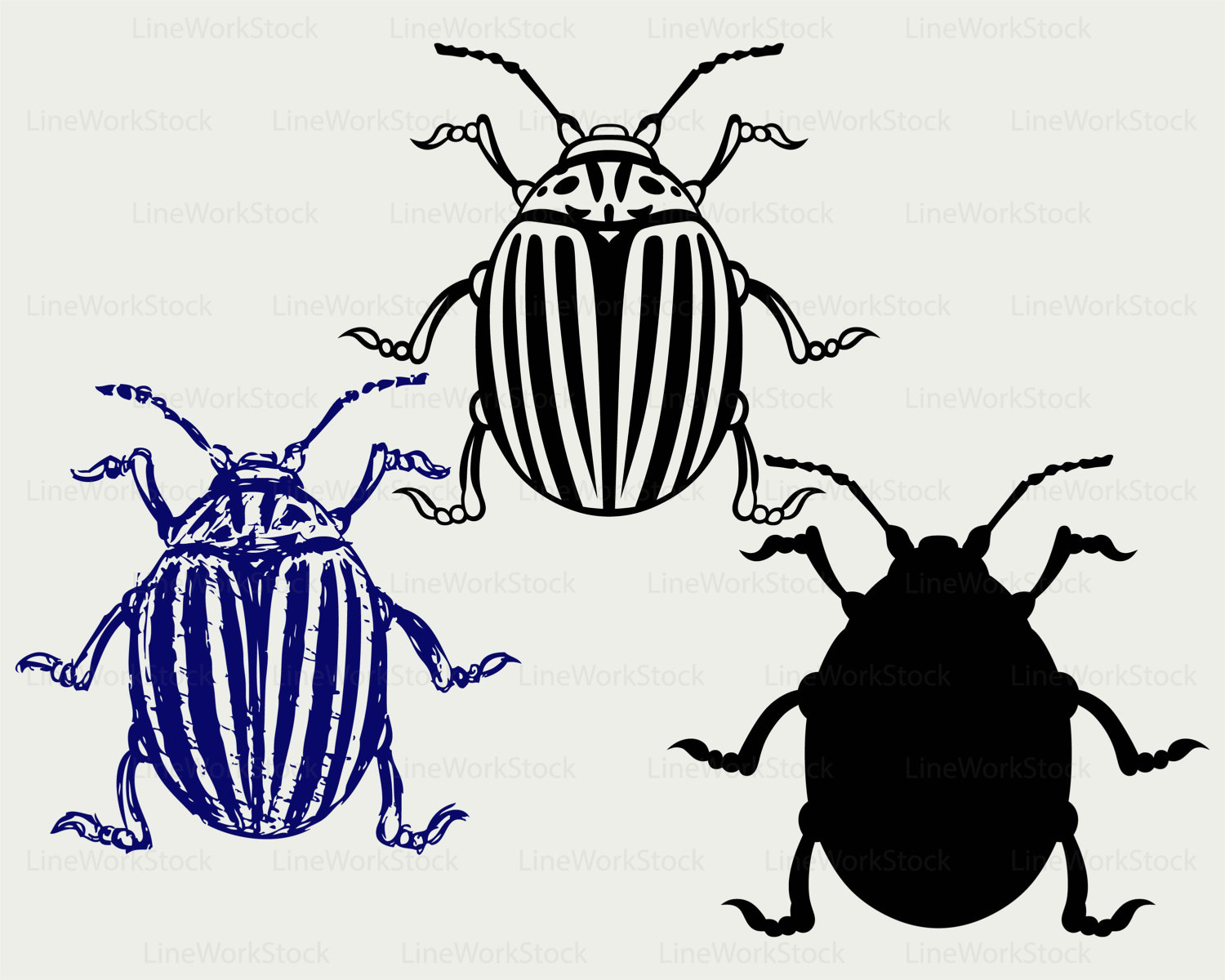 1500x1200 Colorado Beetle Svgeetle Clipartug Svginsects Silhouette