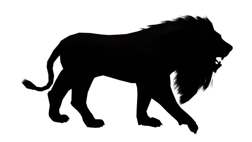 852x480imated Bear Rears Upd Growls On A Transparent Background