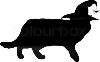 320x199 Black Cat Silhouette. Cat. Cat Animal. Animal Black Cat Silhouette