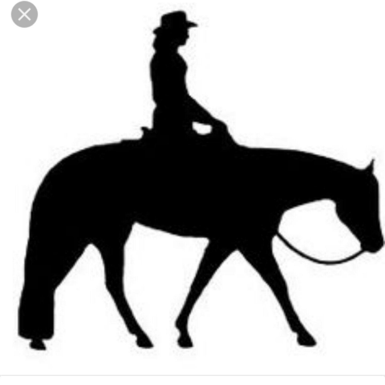 1440x1440 Personalized Horse Buckets Horse Decal Horseshoe Horse