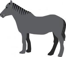 232x200 Cute Horse Head Clip Art Free Clipart Images