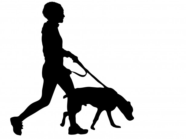 615x460 Lady Walking Dog Silhouette Clipart