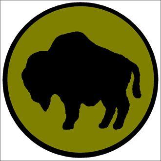 330x330 A Silhouette Of A Buffalo Dominates The Shoulder Sleeve Insignia