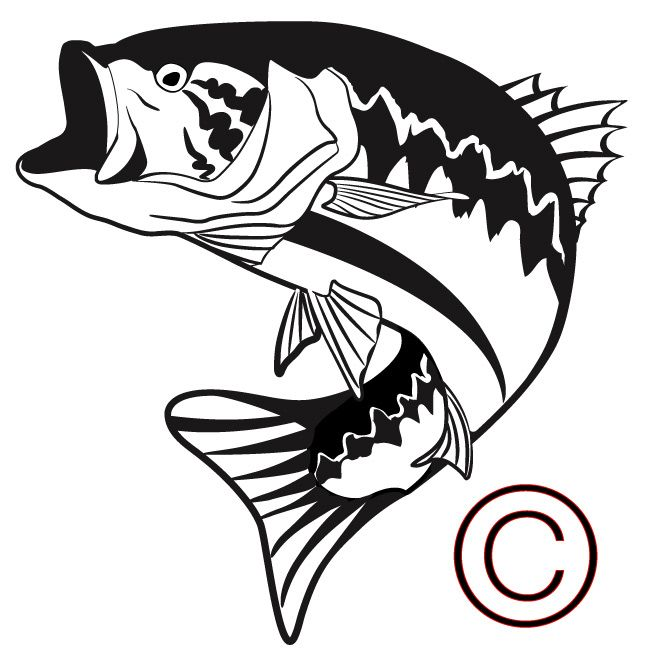 650x650 Bass Fish Silhouette