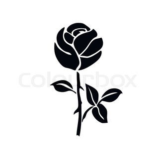 320x320 Silhouette Lily. Black Outline On White Background. Vector