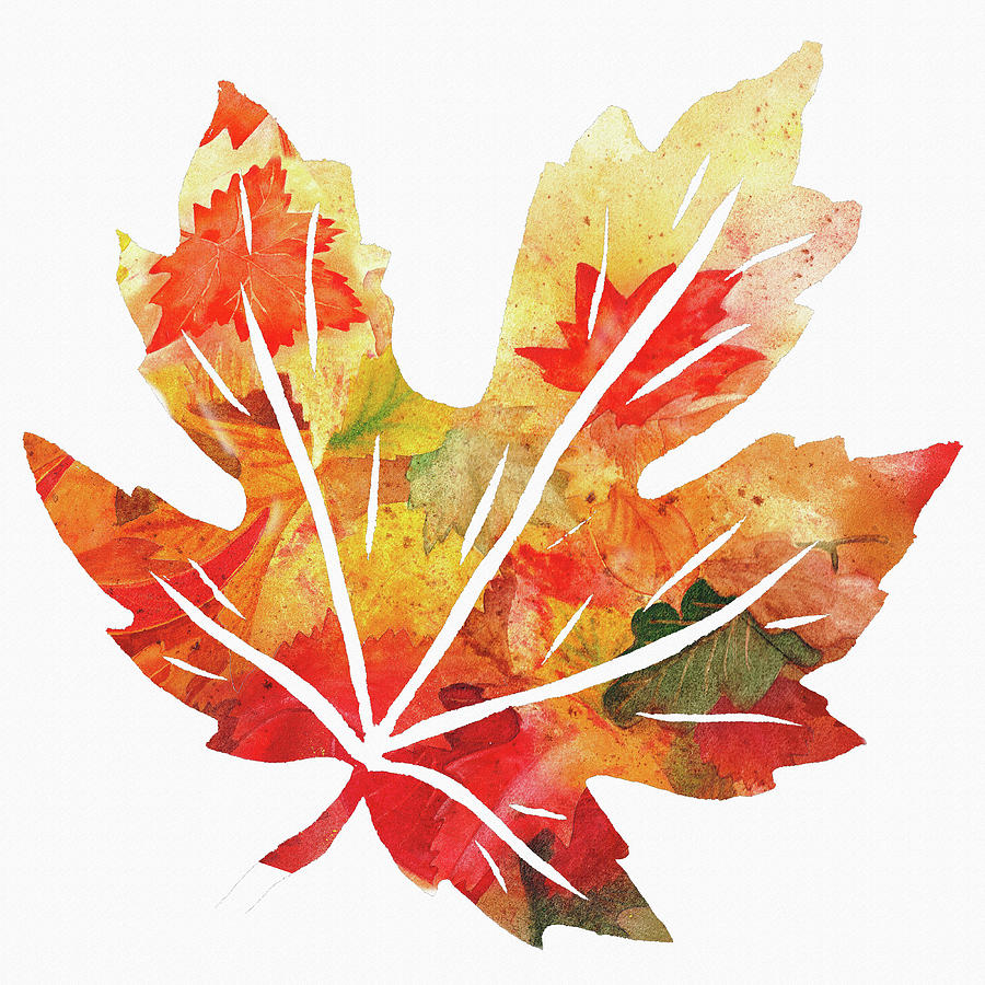 900x900 Maple Leaf Watercolor Silhouette Painting By Irina Sztukowski