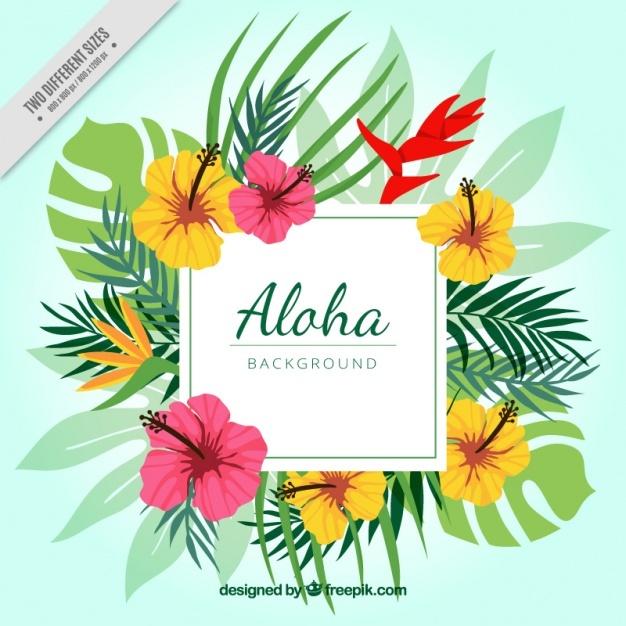 626x626 Hawaii Vectors, Photos And Psd Files Free Download