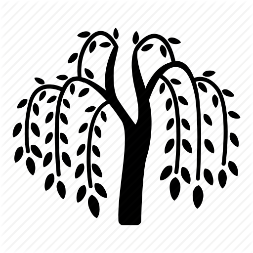 512x512 Branches, Fronds, River, Tree, Vegetation, Weeping, Willow Icon