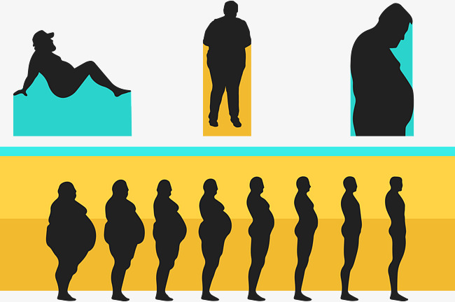 650x432 Fitness Weight Loss Vector, Compared, Blue, Yellow Png And Vector