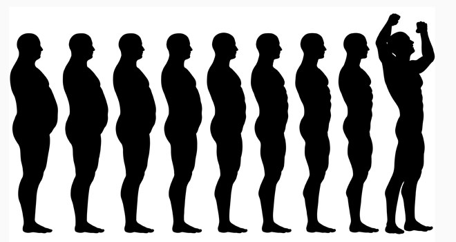660x350 The Basics Of Weight Loss The Fitness Impresario