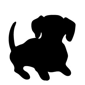 288x288 Dachshund Three Dogs Wallpapers Canadian Pet Care Images
