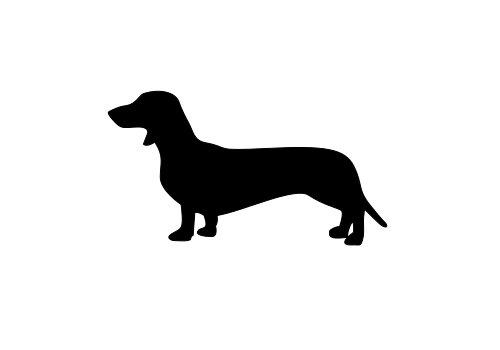 500x350 Dachshund Vinyl Decal Weiner Dog Car Laptop Sticker