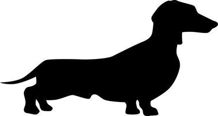 449x240 Dachshund Dog Silhouette Weiner Dogs Dog