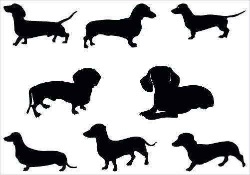501x351 Dachshund Clipart Outline Many Interesting Cliparts
