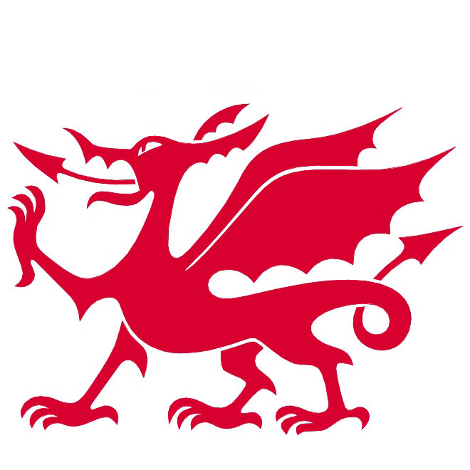 660x660 Welsh Dragon Vector Image