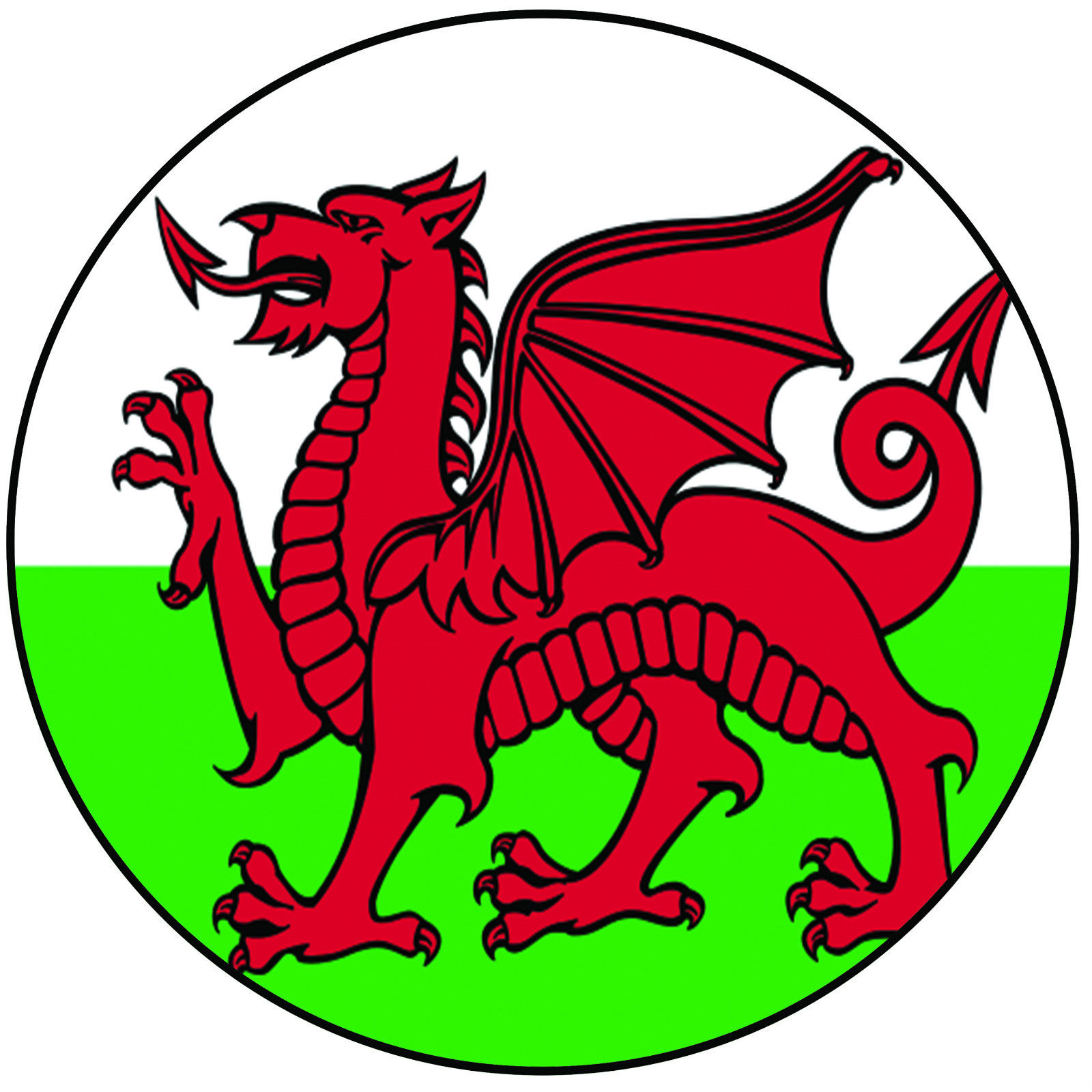 1600x1600 Best Welsh Dragon Cake Topper Deals Compare Prices On Dealsan.co.uk