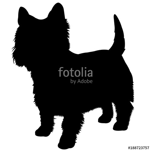 500x500 West Highland White Terrier Silhouette Vector Graphics Stock