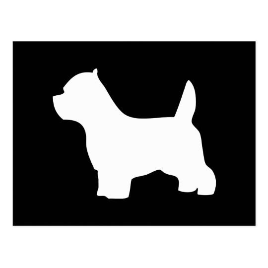 540x540 West Highland White Terrier Dog, Westie Silhouette Postcard