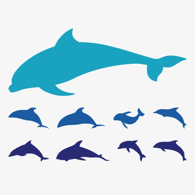 650x650 Fish Silhouette, Sketch, Vector, Whale Png And Vector For Free