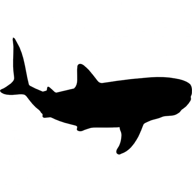 626x626 Whale Shark Shape Icons Free Download