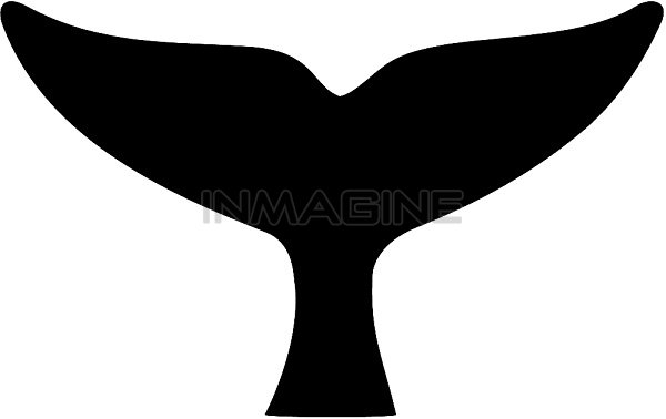 600x378 Tail Clipart Whale Tale Many Interesting Cliparts
