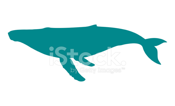 724x440 Humpback Whale Silhouette Stock Vector