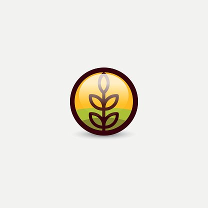 416x416 Isolated Round Shape Abstract Agricultural Vector Wheat Ear
