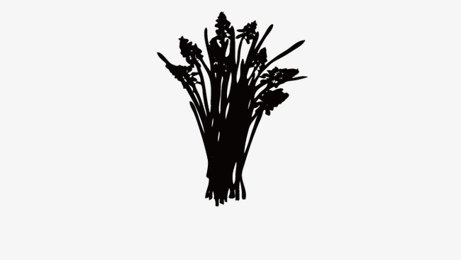 650x366 Wheat, Silhouette Of Wheat, Food Png And Vector For Free Download