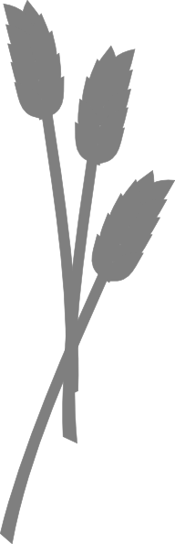 192x595 Wheat Silhouette Clip Art