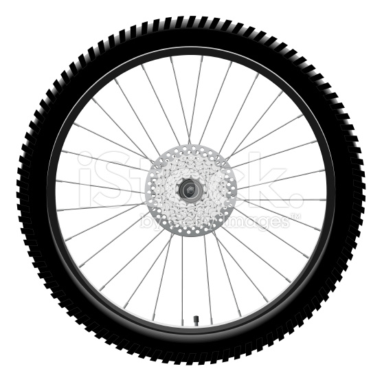 556x556 Bicycle Wheel Silhouette
